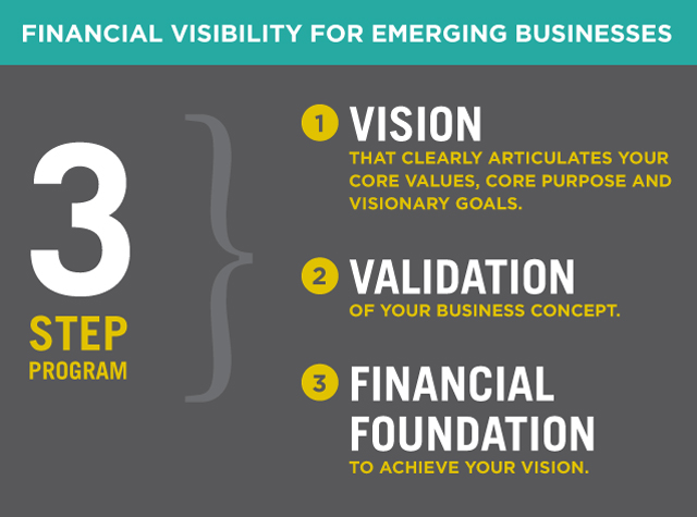 Financial Visibility for Emerging Businesses
