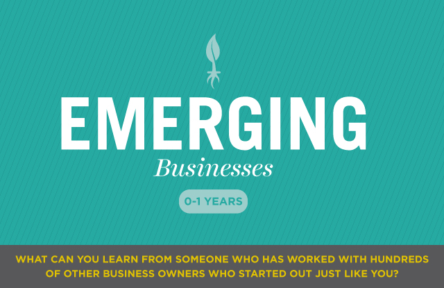 Emerging Businesses: 0-1 Years