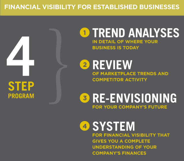 Financial Visibility for Established Businesses
